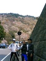 2007hanami