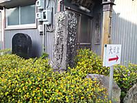 Ts3r0176